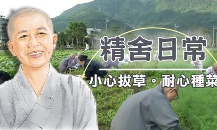 宿師父─小心拔草。耐心種菜04