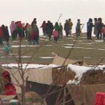 援助阿富汗難民